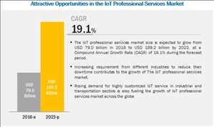 Servicios profesionales de Internet de las cosas (IoT)